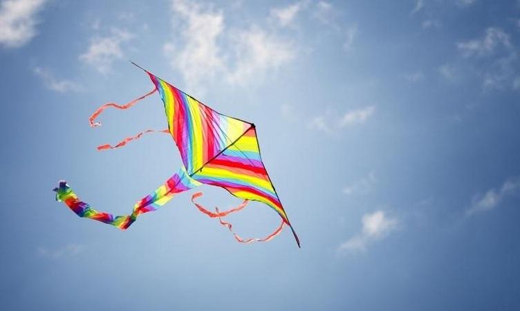 Bikaniri Kites